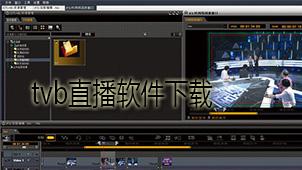tvb直播软件下载