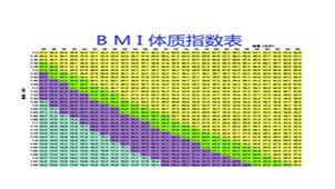 BMI指数专题