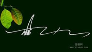 艺术签名专题