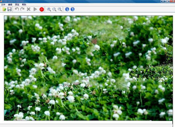 Inpaint图片去水印软件截图5