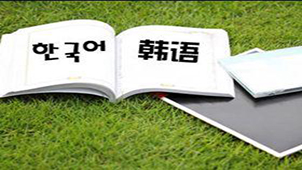 naver中韩词典专题