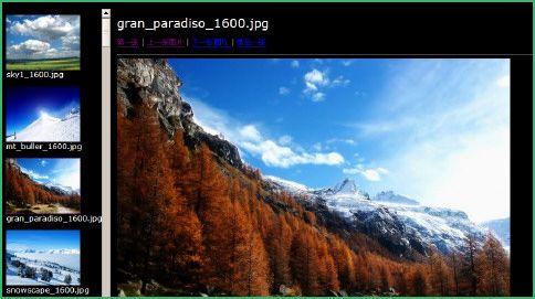 Picasa MAC版截图