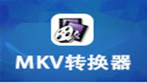 MKV转换器专题