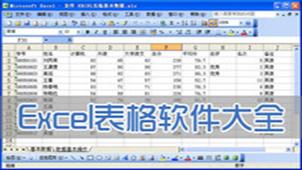 電子表格軟件專題