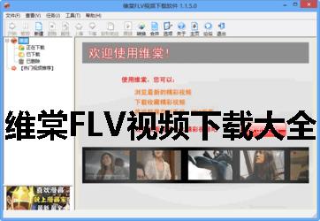 維棠FLV視頻下載大全
