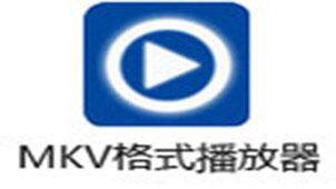 mkv播放器专题