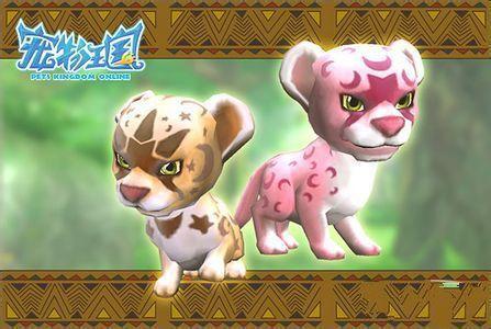 寵物王國1專題