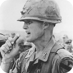 战地之越战风云(BattleField: Vietnam)LOGO