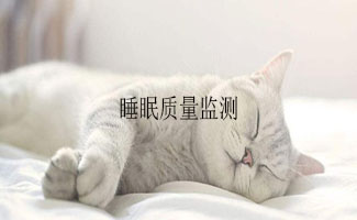 睡眠质量监测