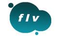 FLV Player段首LOGO