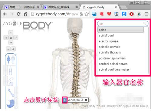 傲游云浏览器_谷歌人体浏览器下载_谷歌人体浏览器官方免费版下载-华军软件园