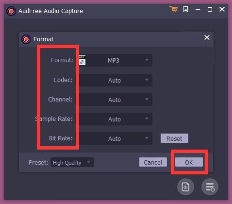 AudFree Audio Capture截图