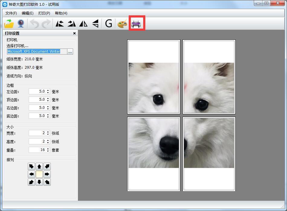 神奇大图打印软件截图