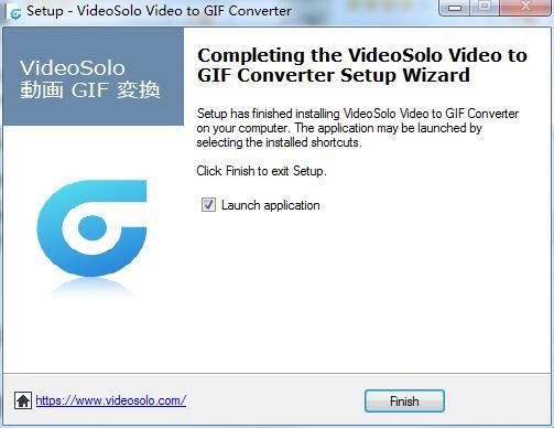 VideoSolo Video to GIF Converter