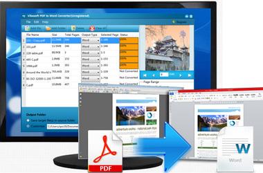 Vibosoft PDF to Word Converter截图