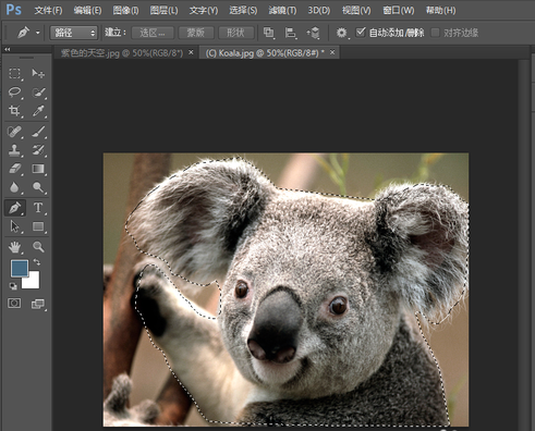 Adobe Photoshop CS6最新免费下载_Photoshop绿色版