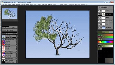 Tree Studio截图