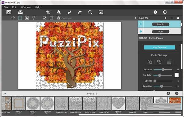 PuzziPix Pro