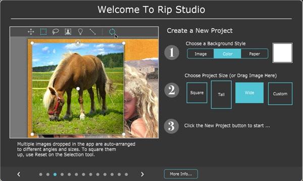 Rip Studio
