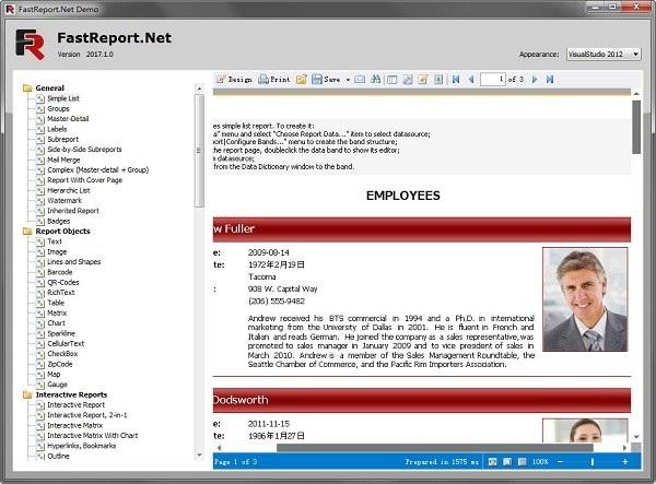 fastreport .net
