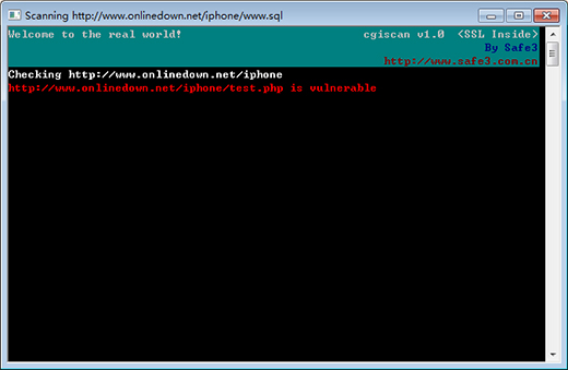 Safe3 Web漏洞扫描系统截图2
