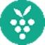 Berrycast 0.18.2 正式版