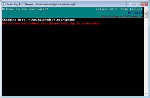 Safe3 Web漏洞扫描系统截图