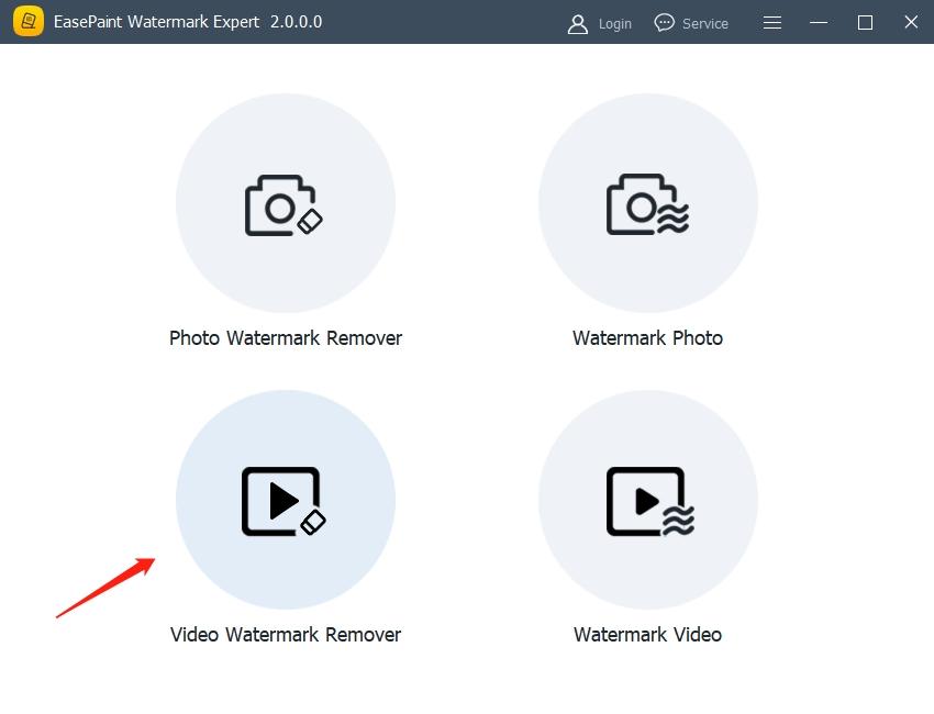 EasePaint Watermark Expert截图