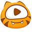 虎牙视频下载软件(ViDown)专版