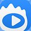 新浪視頻下載軟件(ViDown)專版