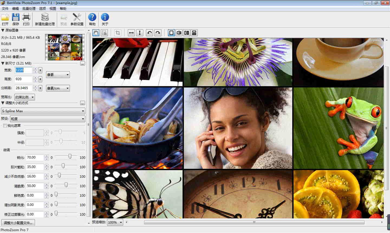 PhotoZoom Pro(Mac版)图片无损放大软件截图2