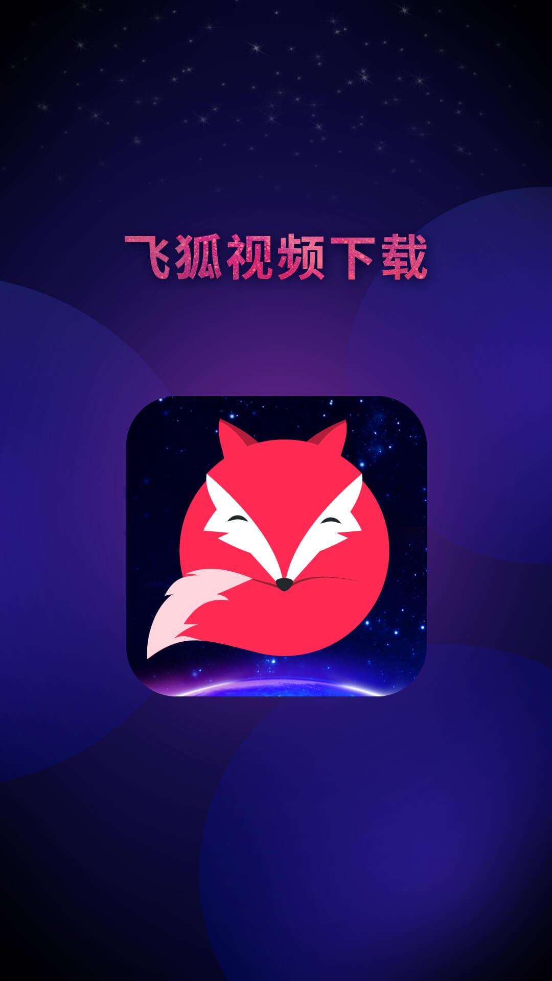 飞狐视频下载器截图4