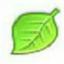 綠葉u盤啟動盤制作工具