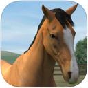 我的马iPad版
