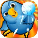 魔鸟迷阵iPad版