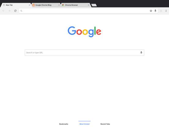 谷歌浏览器iPad版截图6