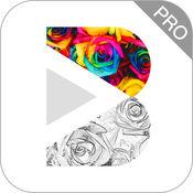 多彩素描相机专业版—手绘风格照片LOGO