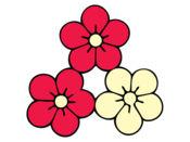 花的力量 : 可爱的花