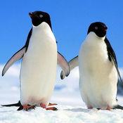 Linux系统命令及其使用详解大全