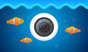 水下网络摄像机