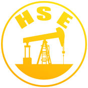 HSE查询系统