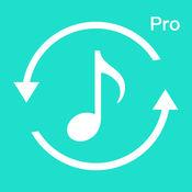 音频格式转换专业版(Audio Converter Pro )
