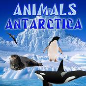 南极动物LOGO