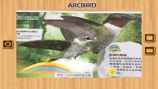 ARCBIRD - ARC BIRD截图5