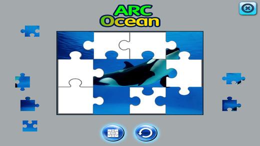 ARCOCEAN - ARC OCEAN截图4