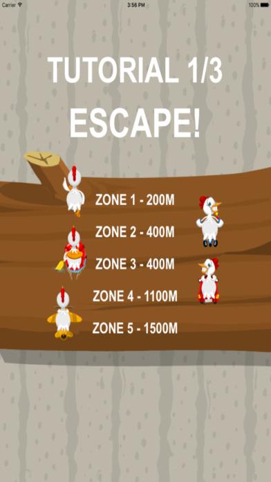 小动物追击战—吃金蛋的公鸡截图2