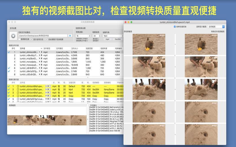 闪电视频转换器- 视频转换&剪切截图2