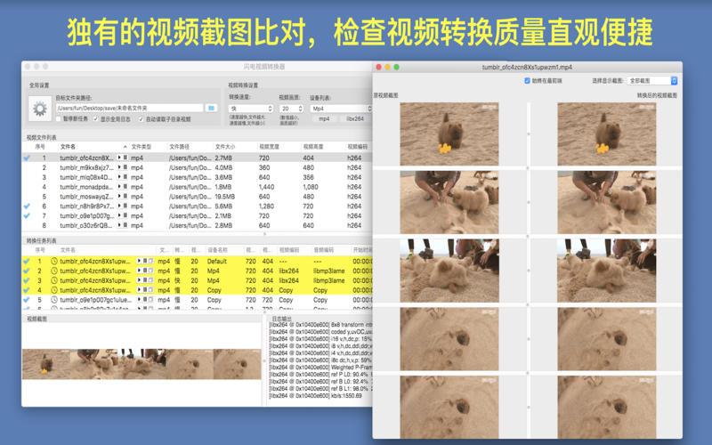 闪电视频转换器Pro - 视频转换&剪切截图2