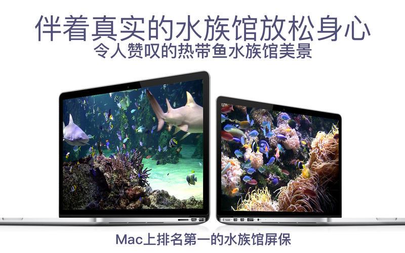 水族馆HD+: 海洋屏保截图2