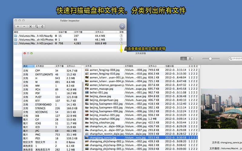 文件分类浏览器 - 按文件类型分类浏览文件截图1